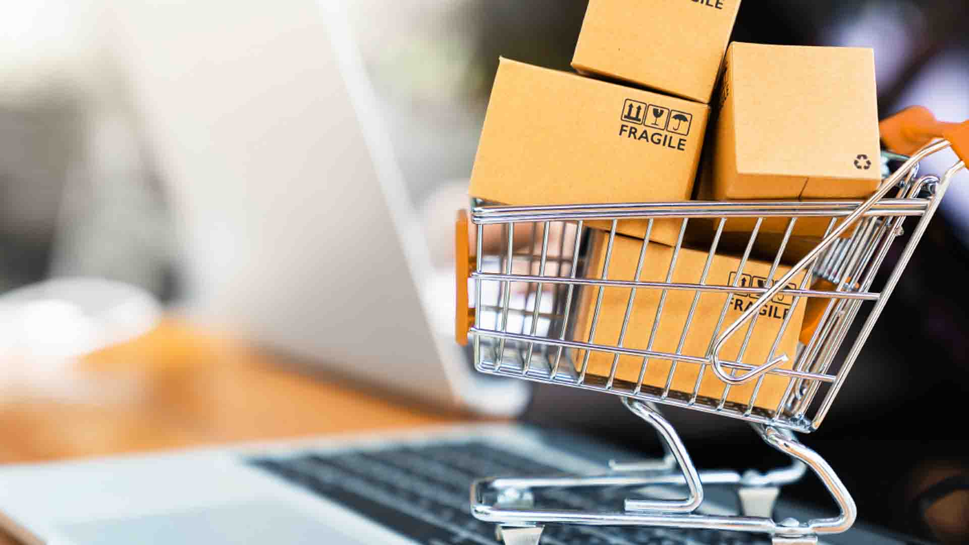 Cyber Chasse- Ecommerce
