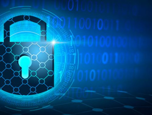 Cyber Chasse- Cybersecurity Penetration Testing
